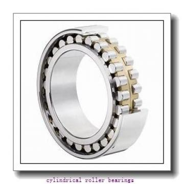 8.661 Inch | 220 Millimeter x 10.63 Inch | 270 Millimeter x 1.969 Inch | 50 Millimeter  CONSOLIDATED BEARING NNCL-4844V C/3  Cylindrical Roller Bearings