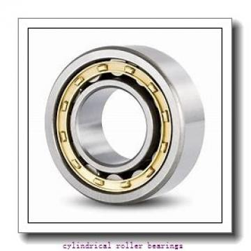 3.937 Inch   100 Millimeter x 5.125 Inch   130.175 Millimeter x 3.25 Inch   82.55 Millimeter  CONSOLIDATED BEARING A 5320  Cylindrical Roller Bearings