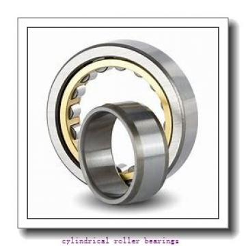1.969 Inch | 50 Millimeter x 4.331 Inch | 110 Millimeter x 1.063 Inch | 27 Millimeter  CONSOLIDATED BEARING NUP-310E M  Cylindrical Roller Bearings