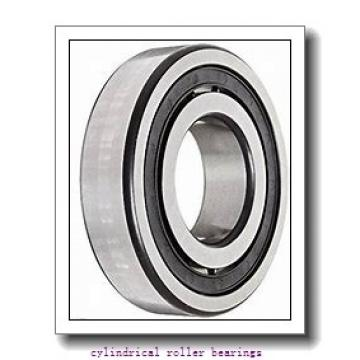8.661 Inch | 220 Millimeter x 15.748 Inch | 400 Millimeter x 2.559 Inch | 65 Millimeter  CONSOLIDATED BEARING NUP-244E M C/3  Cylindrical Roller Bearings
